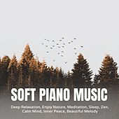 Soft Piano Music for Deep Relaxation, Enjoy Nature, Meditation, Sleep, Zen, Calm Mind, Inner Peace, Beautiful Melody by Various Artists