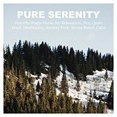 Pure Serenity: Peaceful Piano Music for Relaxation, Zen, Quiet Mind, Meditation, Anxiety Free, Stress Relief, Calm von Various Artists