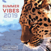 Summer Vibes 2019 - EP de Various Artists