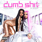 Dumb Shit: The Album by S3NSI MOLLY & LIL BROOK