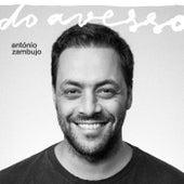 Do Avesso de António Zambujo