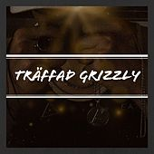 Träffad by Grizzly