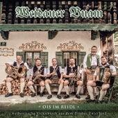 Ois im Reidl / Weidauer Buam / Authentische Volksmusik aus dem Tiroler Unterland by Various Artists