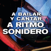 A Bailar Y Cantar A Ritmo Sonidero by Various Artists