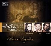 Bach, Telemann & Hertel: Organ Works, Cantatas & Partitas by Various Artists