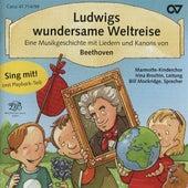 Ludwigs wundersame Weltreise von Various Artists