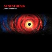 Synesthesia de Dante Tomaselli
