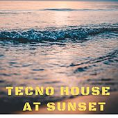 Tecno House At Sunset di Various Artists