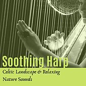Soothing Harp: Celtic Landscape & Relaxing Nature Sounds by Celtic Dreams
