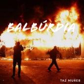 Balbúrdia de Taz Mureb