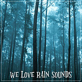 We love Rain Sounds van Rain Sounds (2)