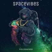 Spacevibes von Terceira Visão
