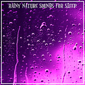 Rainy Nature Sounds For Sleep by Sleep Sounds of Nature
