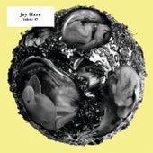 fabric 47: Jay Haze (DJ Mix) von Various Artists