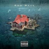 Ptsd von Rod Wave