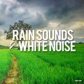 Rain Sounds & White Noise - EP von Rain Sounds (2)