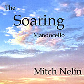 The Soaring Mandocello by Mitch Nelín