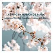 Hermosa Musica De Piano Para Relajacion, Bienestar, Serenidad, Armonia Y Meditacion by Various Artists