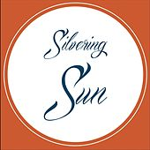 Silvering Sun by Silvering Sun