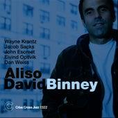 Aliso by David Binney