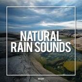 Natural Rain Sounds - EP de Rain Sounds (2)