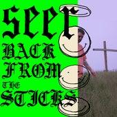 Back from the Sticks von Seer