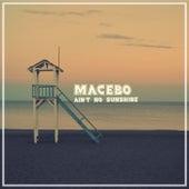 Ain't No Sunshine von Macebo