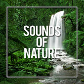 Sounds Of Nature - EP by Sounds Of Nature