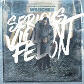 Serious Violent Felon von Wildchild