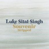 Souvenir (Stripped) by Luke Sital-Singh