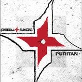 Puritan von Ragdoll Sunday