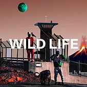 Wild Life by KMD