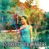 45 Direct Your Chakras von Massage Therapy Music