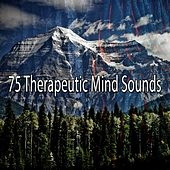 75 Therapeutic Mind Sounds von Lullabies for Deep Meditation