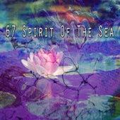 67 Spirit of the Sea von Massage Therapy Music