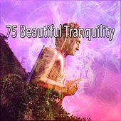 75 Beautiful Tranquility de Nature Sounds Artists