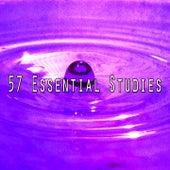 57 Essential Studies von Entspannungsmusik