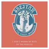 I Don't Wanna Be Nice de Sheitan