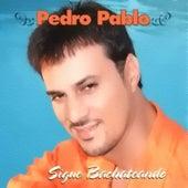 Sigue Bachateando by Pedro Pablo