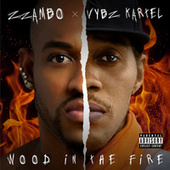 Wood in the Fire by Tafar-i