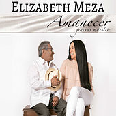 Amanecer, Gracias Maestro by Various Artists