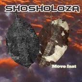Shosholoza de Synergy