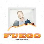 Fuego by Sam Johnson