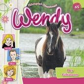 Folge 65: Der Giftalarm von Wendy