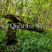 61 Quest for Sleep de White Noise Babies