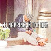 41 Napping in the Day de White Noise Babies