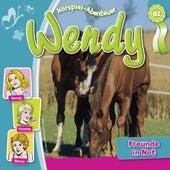 Folge 61: Freunde in Not von Wendy
