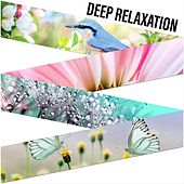 Deep Relaxation de Nature Sounds (1)
