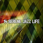 14 Serene Jazz Life von Peaceful Piano