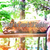 51 Hear the Sounds Of Soothing von Sounds of Nature Relaxation